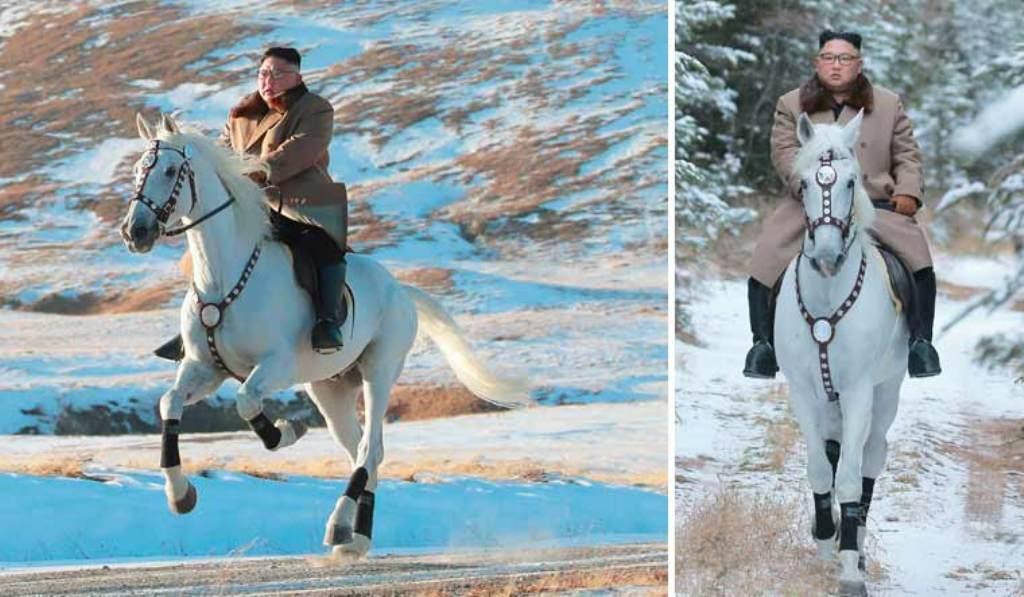 किमको घोडाका लागि उत्तर कोरियाले हजारौँ डलर खर्च गरेको खुलासा